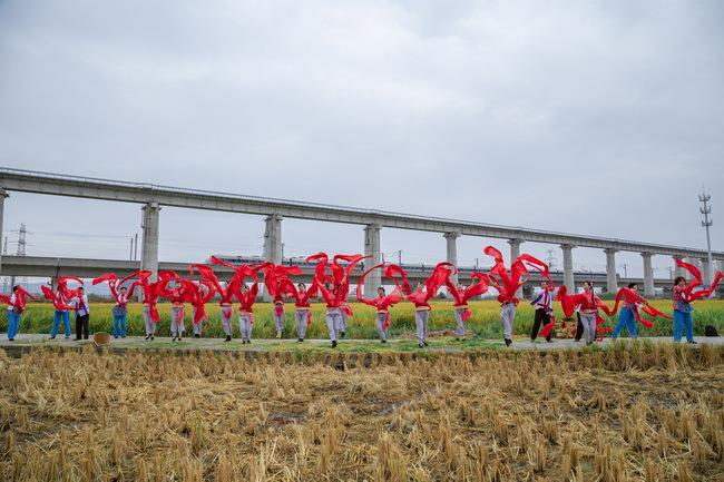 乐清市虹桥镇乡村艺术总团成员在峃前村的田野中,以歌舞表达丰收的喜悦。(虹桥镇纪委 周云峰摄).jpg